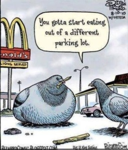 Even the Birds Know!