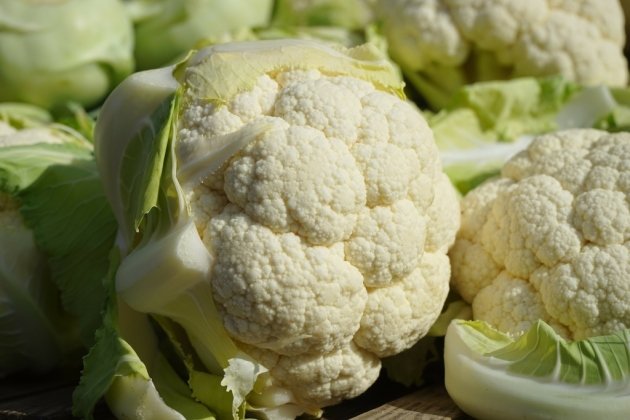 cauliflower-318152_1920-1024x683